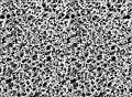 Membrány WHATMAN - nitrát celulózy